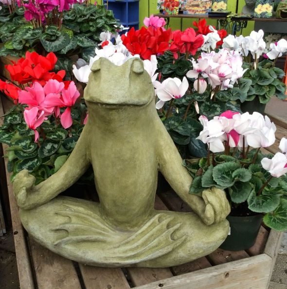 JYC Frog & Flowers