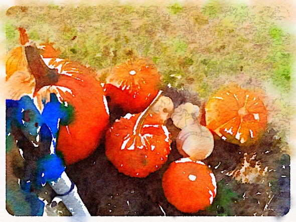 Waterlogue 1.1.4 (1.1.4) Preset Style = Color Bloom Format = 6