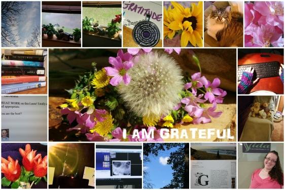 Grateful collage Feb 2016