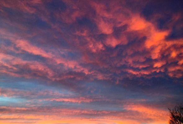 sunset 1.31