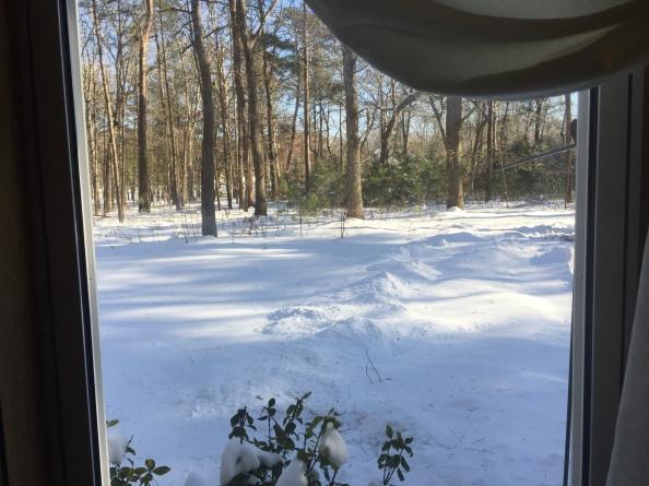 1-6-snow